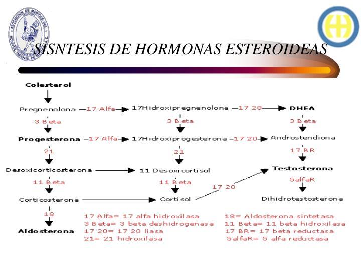 SISNTESIS DE HORMONAS ESTEROIDEAS