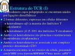 estrutura do tcr i
