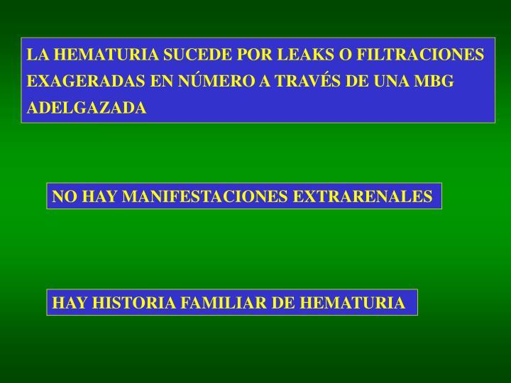 LA HEMATURIA SUCEDE POR LEAKS O FILTRACIONES