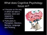 what does cognitive psychology focus on