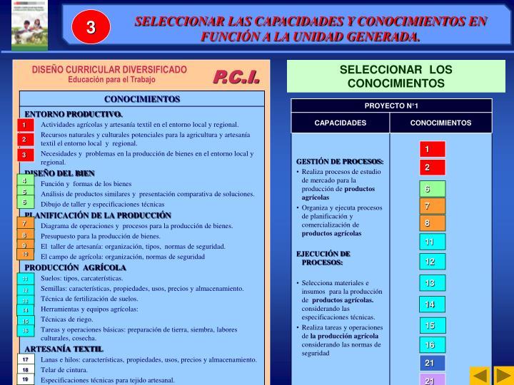 SELECCIONAR LAS CAPACIDADES Y CONOCIMIENTOS EN FUNCIÓN A LA UNIDAD GENERADA.