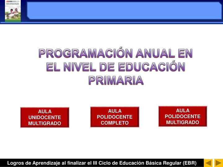 PROGRAMACIÓN ANUAL EN EL NIVEL DE EDUCACIÓN PRIMARIA