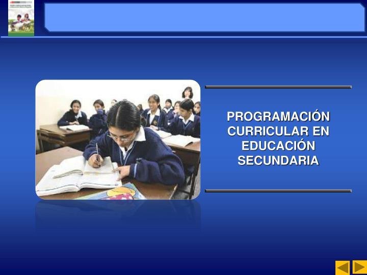 PROGRAMACIÓN CURRICULAR EN EDUCACIÓN SECUNDARIA