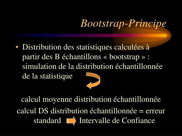 Bootstrap-Principe