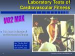 laboratory tests of cardiovascular fitness