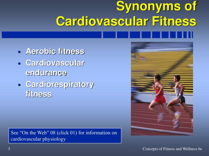 a scientific look at cardiovascular fitness essay Benefits of exercise on the human body physical education the beneficial effect of exercise on the cardiovascular system take a look at what our essay writing.