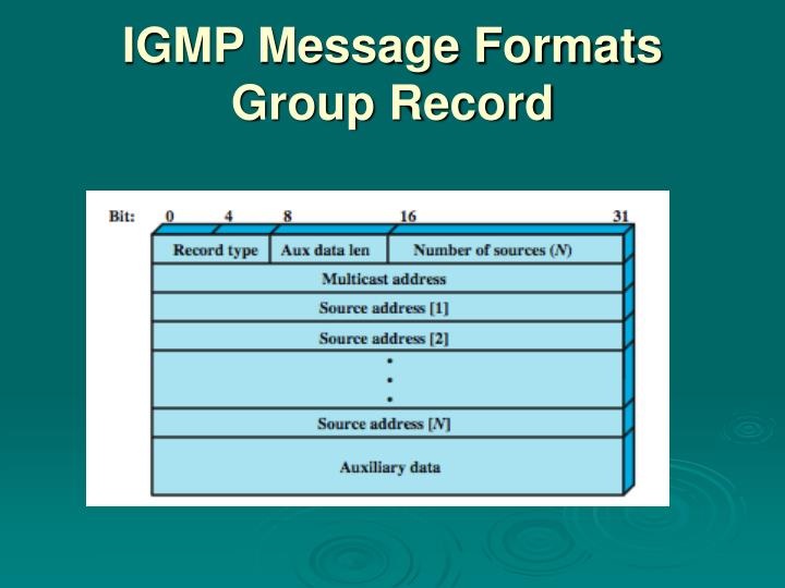 IGMP Message Formats