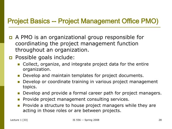 Project Basics -- Project Management Office PMO)