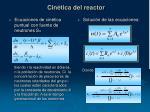 cin tica del reactor