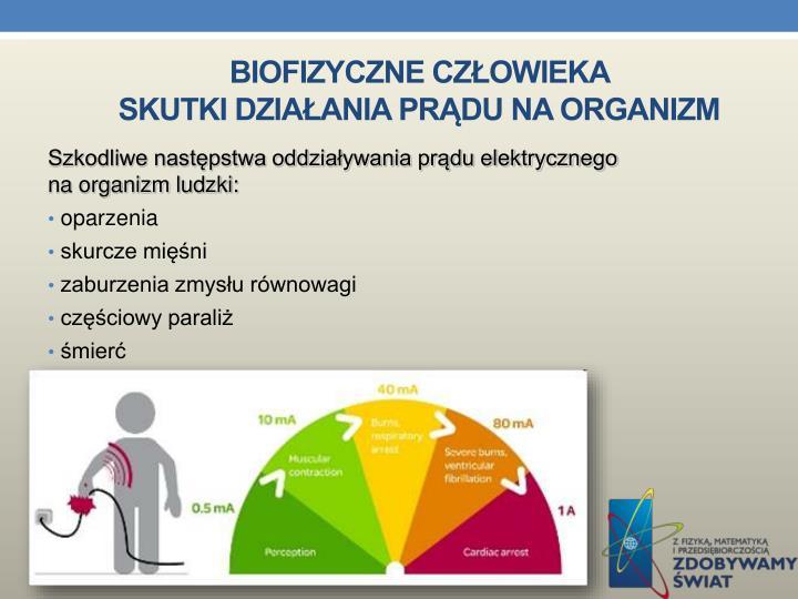 Biofizyczne człowieka