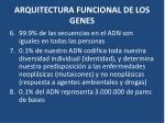 arquitectura funcional de los genes1