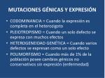 mutaciones g nicas y expresi n1