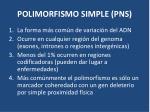 polimorfismo simple pns