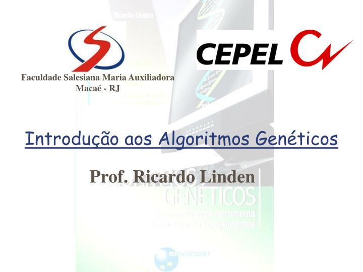 introdu o aos algoritmos gen ticos n.