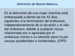 definici n de muerte materna