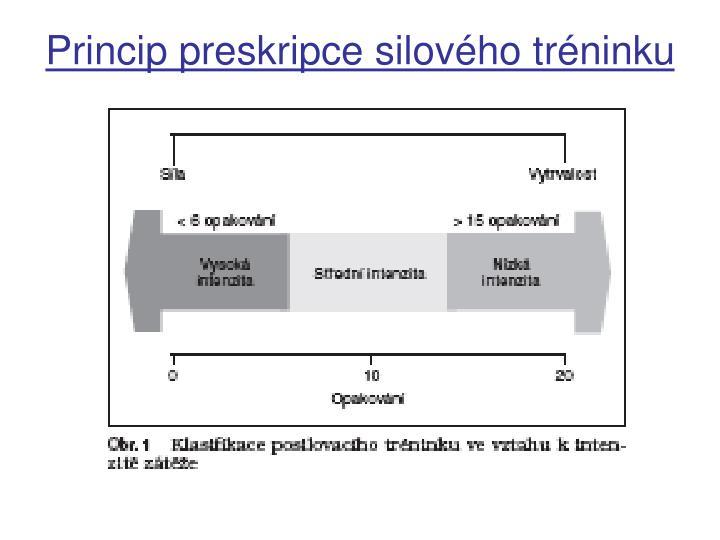 Princip preskripce silového tréninku