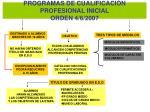 programas de cualificaci n profesional inicial orden 4 6 2007
