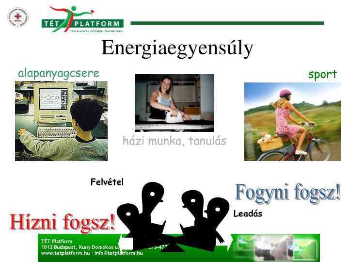 Energiaegyensúly