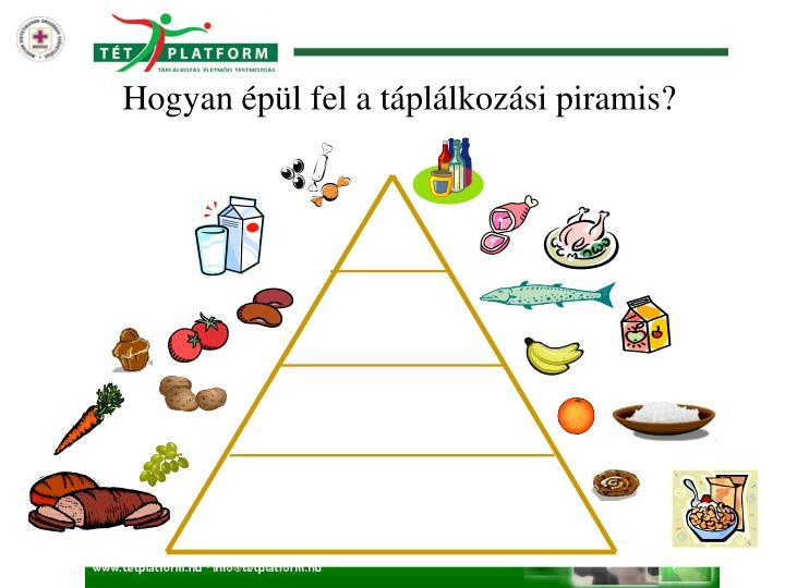 Hogyan épül fel a táplálkozási piramis?