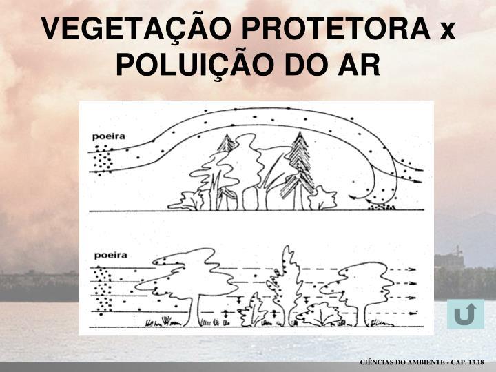 VEGETAÇÃO PROTETORA x POLUIÇÃO DO AR