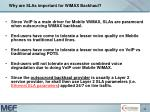 why are slas important for wimax backhaul