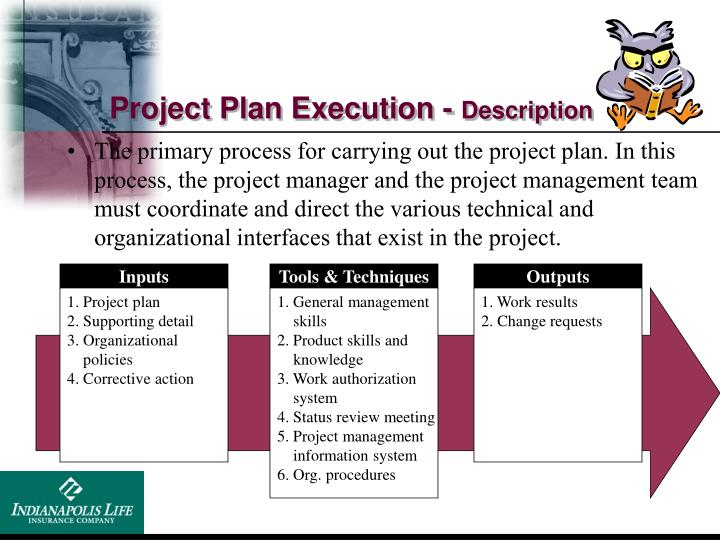 Project Plan Execution -