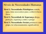 n veis de necessidades humanas1