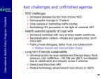 key challenges and unfinished agenda