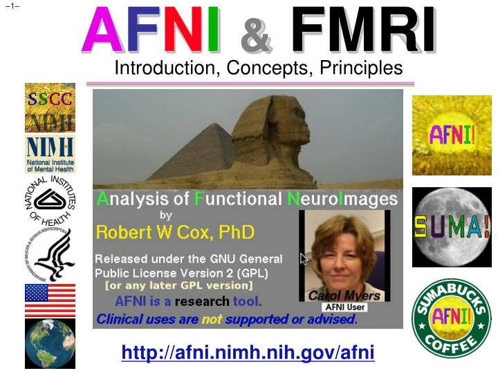 a f n i fmri introduction concepts principles n.