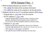 afni dataset files 1