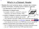 what s in a dataset header