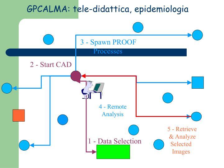 GPCALMA: tele-didattica, epidemiologia