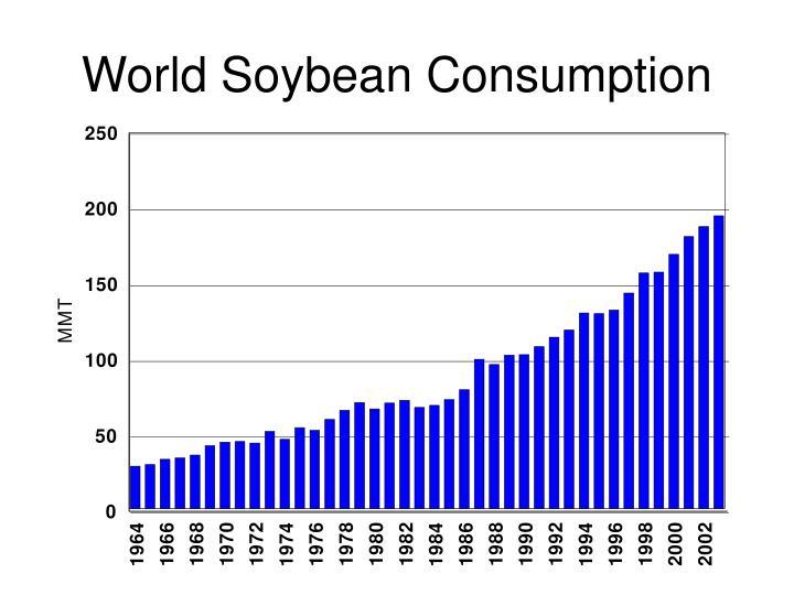 World Soybean Consumption