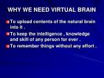 why we need virtual brain