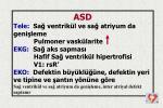 slide30