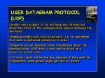 user datagram protocol udp1