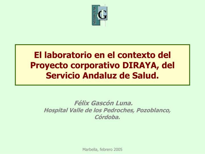 El laboratorio en el contexto del Proyecto corporativo DIRAYA, del Servicio Andaluz de Salud.