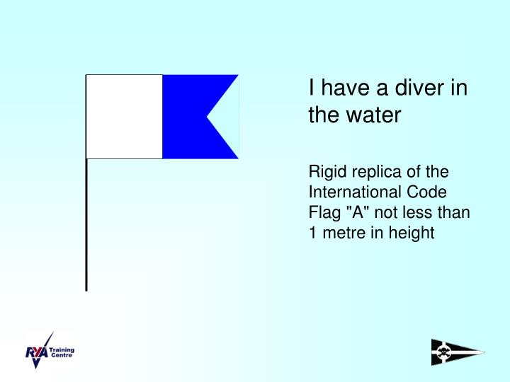I have a diver in the water