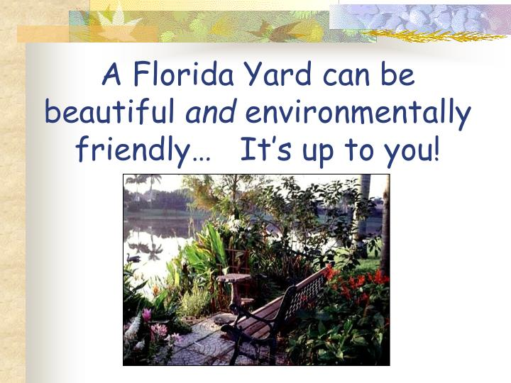 A Florida Yard can be beautiful