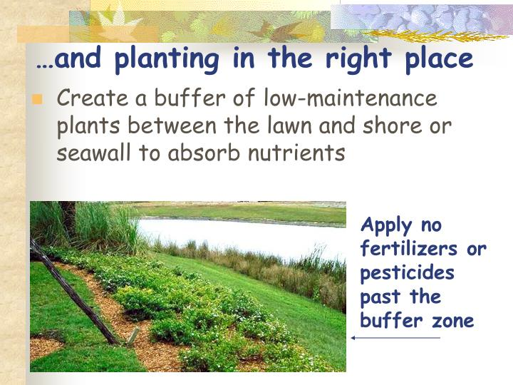 …and planting in the right place