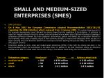 small and medium sized enterprises smes
