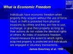 what is economic freedom