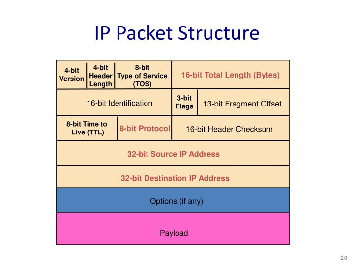 IP Packet Structure