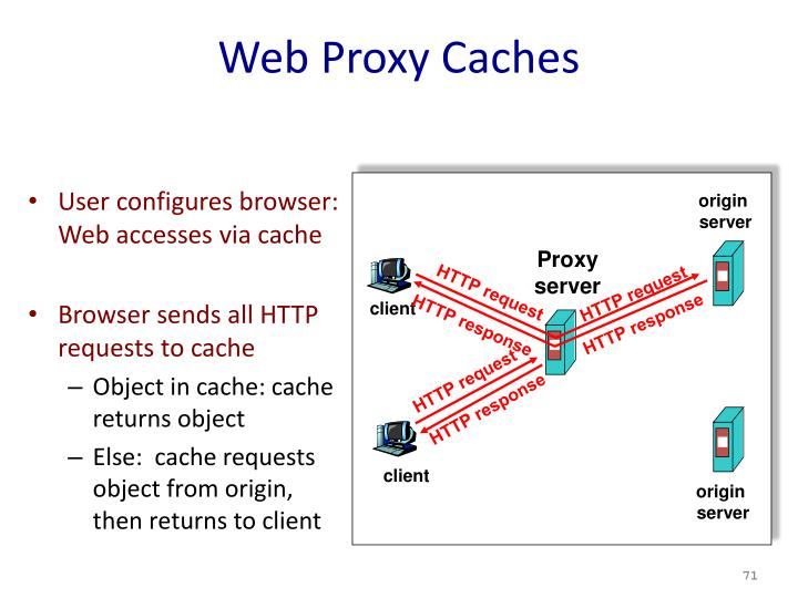 Web Proxy Caches