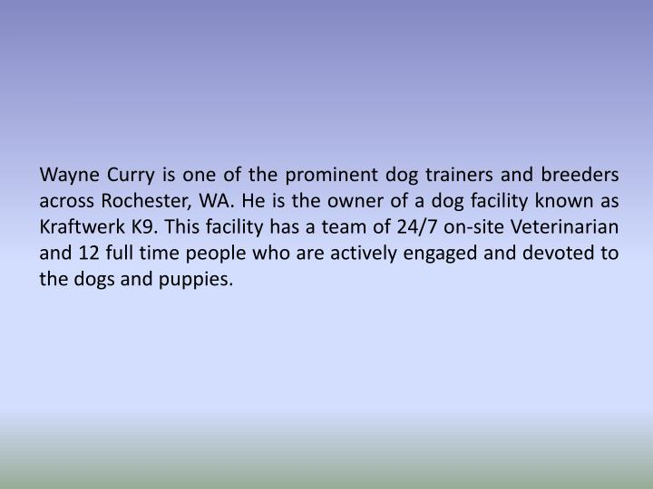 Wayne Curry is one of the prominent dog trainers and breeders across Rochester, WA. He is the owner ...