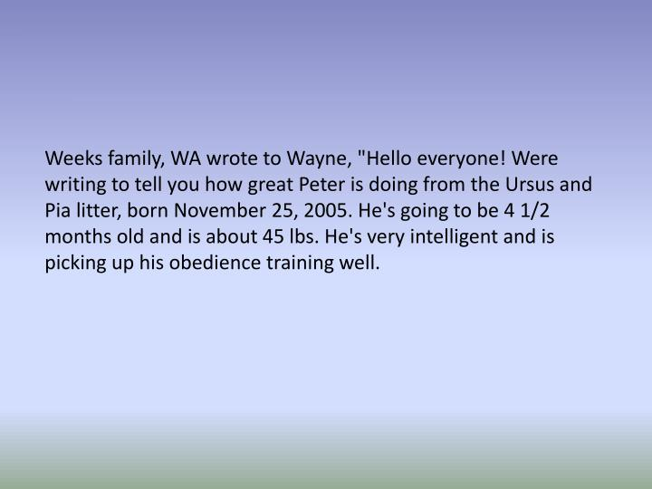 """Weeks family, WA wrote to Wayne, """"Hello everyone! Were writing to tell you how great Peter is doing from the Ursus and Pia litter, born November 25, 2005. He's going to be 4 1/2 months old and is about 45 lbs. He's very intelligent and is picking up his obedience training well."""