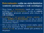 determinantes est o no s cio hist rico contexto antropol gico e rede sociol gica