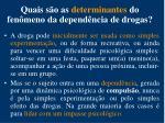 quais s o as determinantes do fen meno da depend ncia de drogas