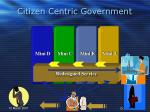 citizen centric government