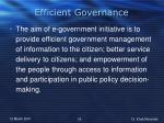efficient governance